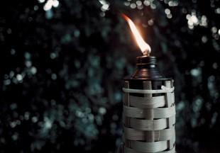 https://pixabay.com/fr/photos/tiki-torche-le-feu-tiki-torch-5764621/