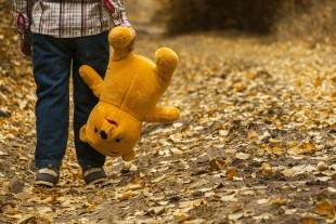 https://pixabay.com/fr/photos/enfant-ours-en-peluche-automne-1051288/
