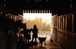 Ferien auf dem Bauernhof-Projekte mittels Zeltbauten
